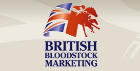 British Bloodstock Marketing by Fantasmagorical